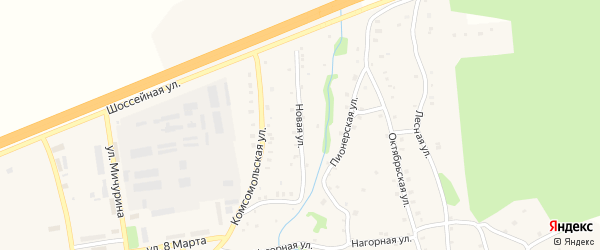 Новая улица на карте Тимирязевского поселка Челябинской области с номерами домов
