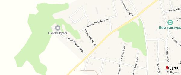Рябиновая улица на карте Трубного поселка с номерами домов