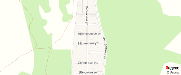 Улица Рябиновая (мкр Чистые росы) на карте села Большие Харлуши Челябинской области с номерами домов