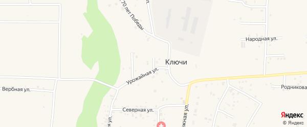 Логовой переулок на карте деревни Ключи Челябинской области с номерами домов