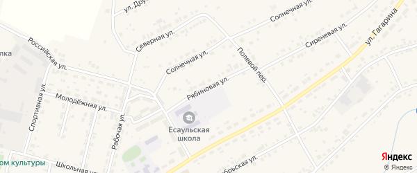 Рябиновая улица на карте Есаульского поселка с номерами домов