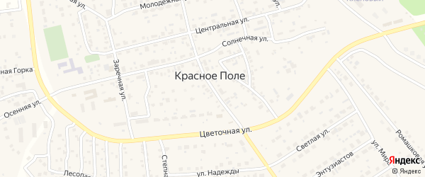 Зеленая улица на карте поселка Красного Поля Челябинской области с номерами домов