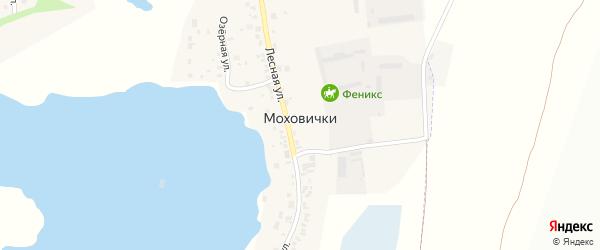Новоградский тракт на карте деревни Моховички с номерами домов