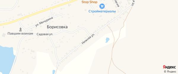 Нижняя улица на карте поселка Борисовки с номерами домов