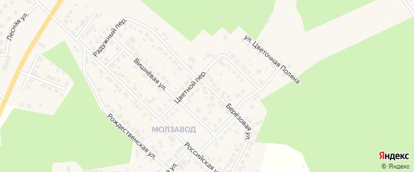 Березовая улица на карте Долгодеревенского села с номерами домов