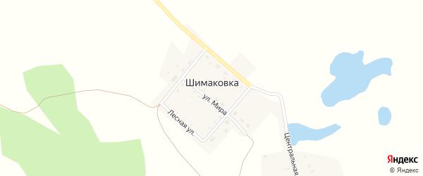 Салютная улица на карте деревни Шимаковки Челябинской области с номерами домов