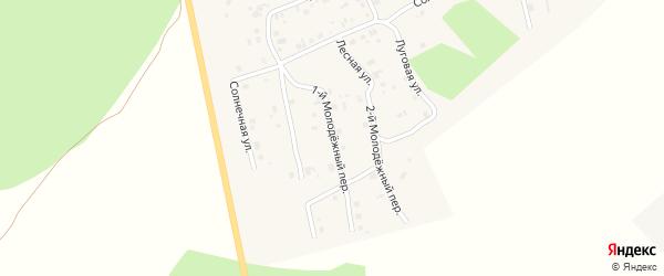 1-й Молодежный переулок на карте села Калачево с номерами домов