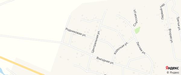 Родниковая улица на карте Петровского поселка Челябинской области с номерами домов