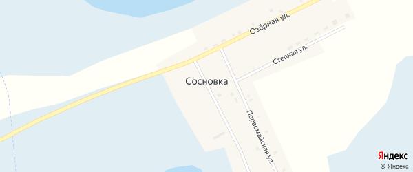 Первомайская улица на карте деревни Сосновки с номерами домов