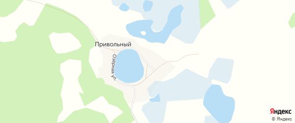 Карта Привольного поселка в Челябинской области с улицами и номерами домов