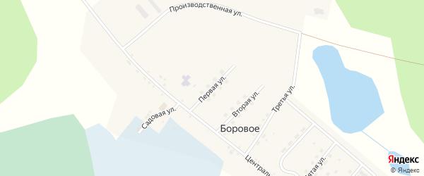 Первая улица на карте деревни Борового с номерами домов