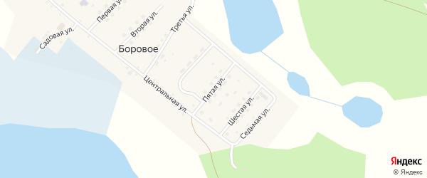 Пятая улица на карте деревни Борового Челябинской области с номерами домов