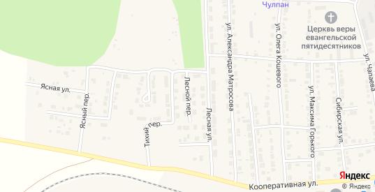 Лесной переулок в Богдановиче с номерами домов на карте. Спутник и схема онлайн
