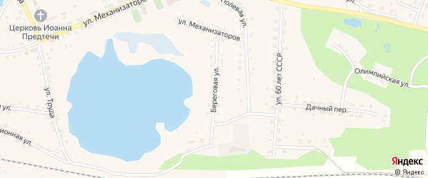 Береговая улица на карте села Канашево Челябинской области с номерами домов