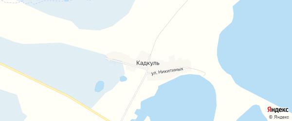 Карта деревни Кадкуля в Челябинской области с улицами и номерами домов