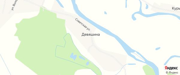 Карта деревни Девяшина в Свердловской области с улицами и номерами домов