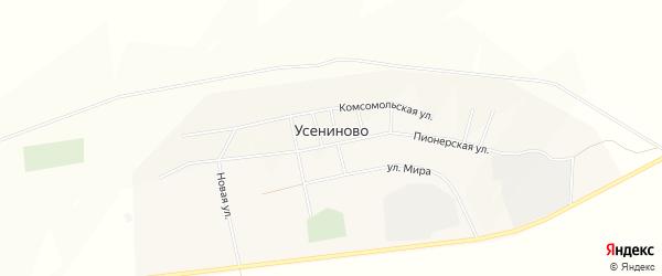 Карта села Усениново в Свердловской области с улицами и номерами домов