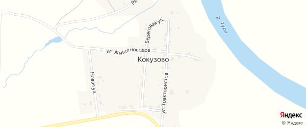 Речная улица на карте деревни Кокузово Свердловской области с номерами домов