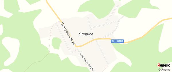 Карта Ягодного села в Курганской области с улицами и номерами домов