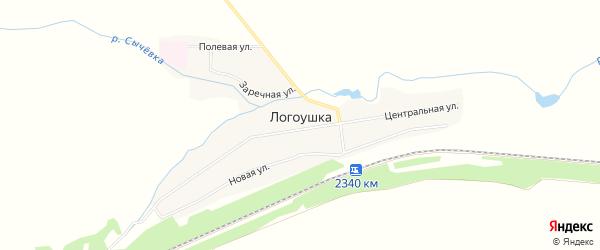 Карта деревни Логоушки в Курганской области с улицами и номерами домов