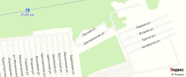 Центральная улица на карте территории СОКА Соловушки Тюменской области с номерами домов
