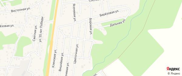 Боровая улица на карте садового некоммерческого товарищества Днт Салюта Курганской области с номерами домов