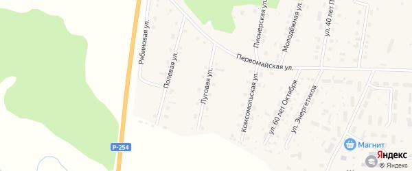 Луговая улица на карте села Шорохово Тюменской области с номерами домов