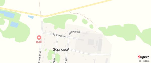 Лесная улица на карте Зернового поселка Тюменской области с номерами домов
