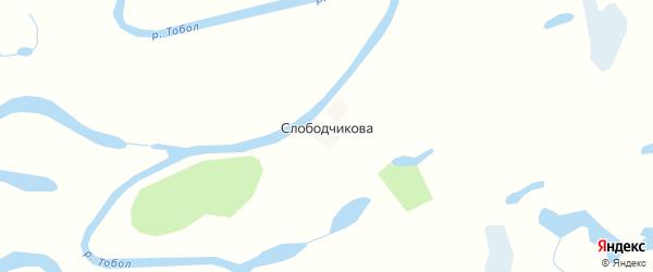 Карта деревни Слободчикова в Курганской области с улицами и номерами домов