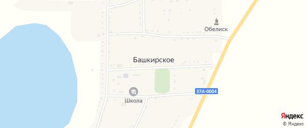 Степной переулок на карте Башкирского села Курганской области с номерами домов