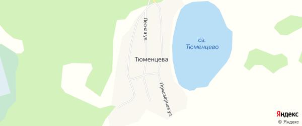 Карта деревни Тюменцева в Тюменской области с улицами и номерами домов