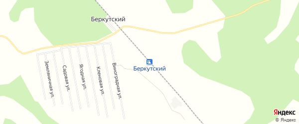 Карта Беркутского разъезда в Тюменской области с улицами и номерами домов
