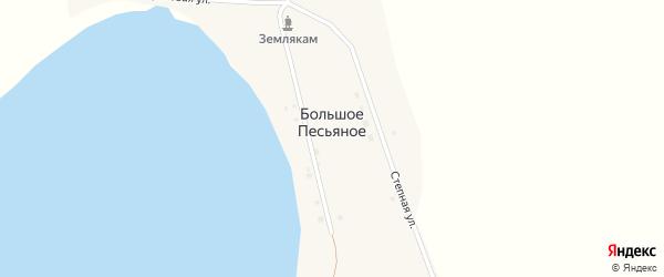 Береговая улица на карте деревни Большое Песьяное Курганской области с номерами домов