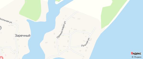 Пушная улица на карте Заречного поселка Ханты-Мансийского автономного округа с номерами домов