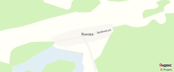 Карта деревни Янкова в Тюменской области с улицами и номерами домов