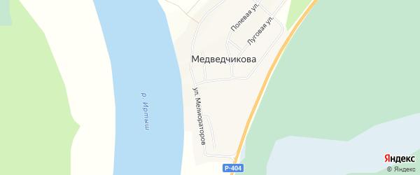 Карта деревни Медведчикова в Тюменской области с улицами и номерами домов
