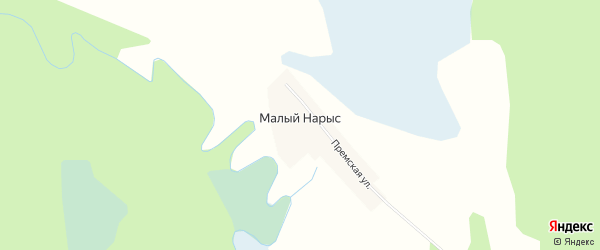 Карта деревни Малого Нарыса в Тюменской области с улицами и номерами домов