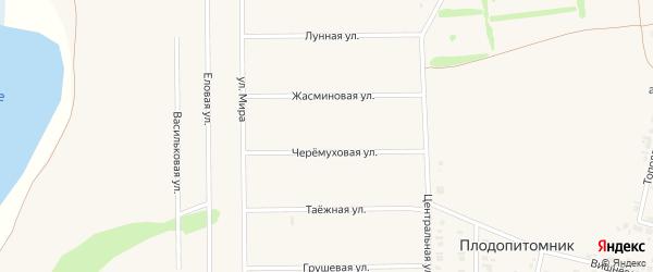 Шлюхи в Тюмени ул Плодопитомник проститутки павлова нижегородской