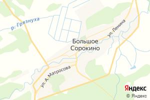 Карта с. Большое Сорокино Тюменская область