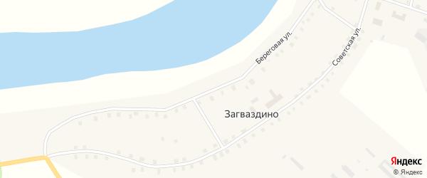 Береговая улица на карте села Загваздино Омской области с номерами домов