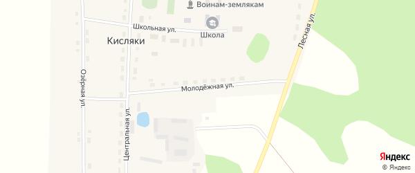 Молодежная улица на карте села Кисляки Омской области с номерами домов