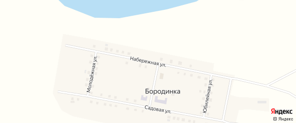 Набережная улица на карте деревни Бородинки Омской области с номерами домов