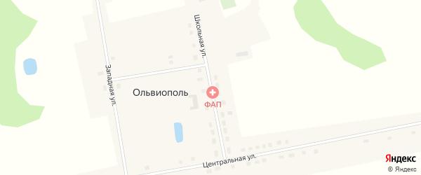 Школьная улица на карте деревни Ольвиополя Омской области с номерами домов