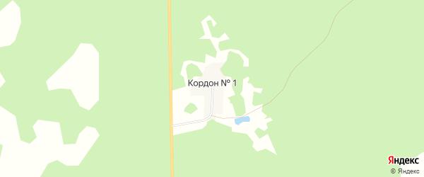 Карта населенного пункта Кордона N 1 в Омской области с улицами и номерами домов