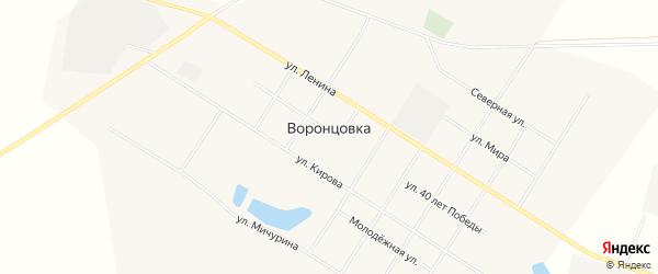 Карта села Воронцовки в Омской области с улицами и номерами домов