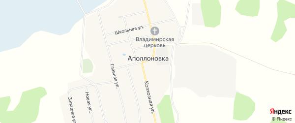 Карта деревни Аполлоновки в Омской области с улицами и номерами домов