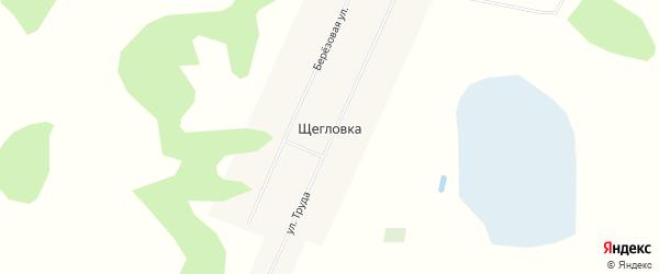Карта деревни Щегловки в Омской области с улицами и номерами домов