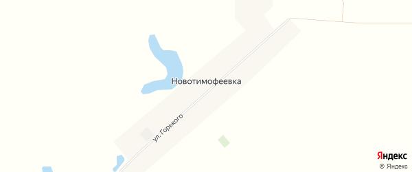 Карта деревни Новотимофеевки в Омской области с улицами и номерами домов