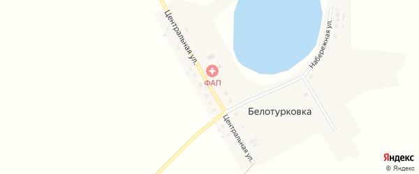 Центральная улица на карте деревни Белотурковки Омской области с номерами домов