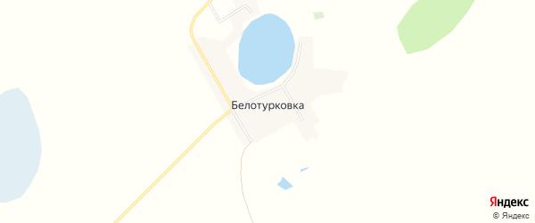 Карта деревни Белотурковки в Омской области с улицами и номерами домов